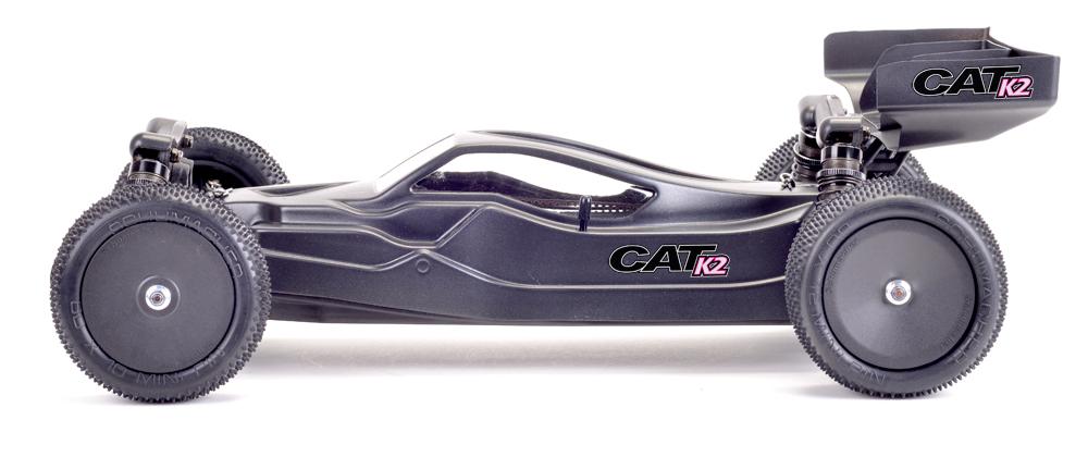 CatK2SideLTL_1000